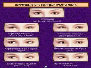 Психология взгляда