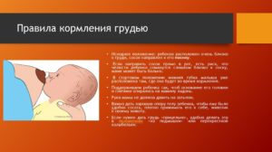правила кормления грудью