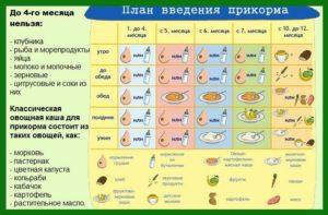 таблица введения прикорма