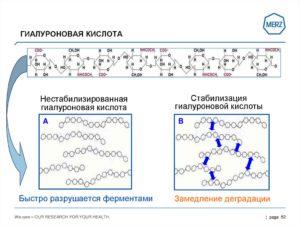 стабилизированная гиалуроновая кислота