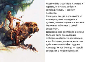 Всё о львах мужчинах