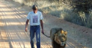 Как успокоить мужчину льва
