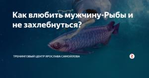 Как влюбить мужчину рыбу
